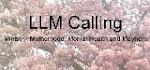 LLM Calling