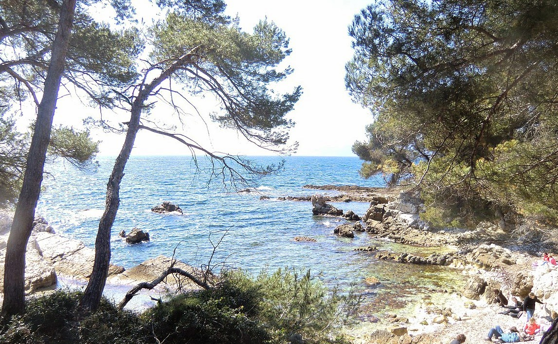 Southwstern shore of Ile Ste-Margueirte