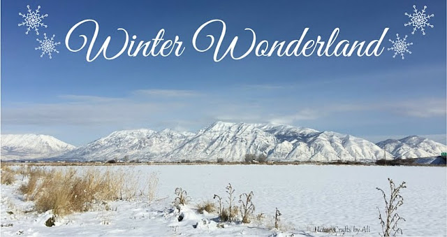 winter snow photographs mountains utah fun