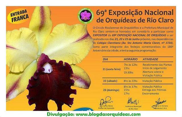 Exposição de Orquídeas de Rio Claro - SP