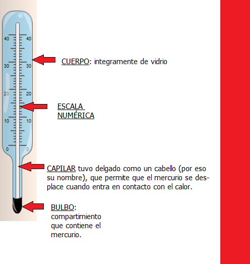 Termometro con sus partes - Imagui
