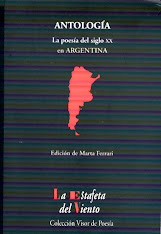 La poesa del S.XX en Argentina