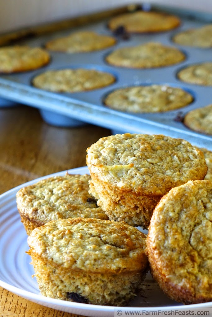 http://www.farmfreshfeasts.com/2014/12/orange-oatmeal-chocolate-chip-muffins.html