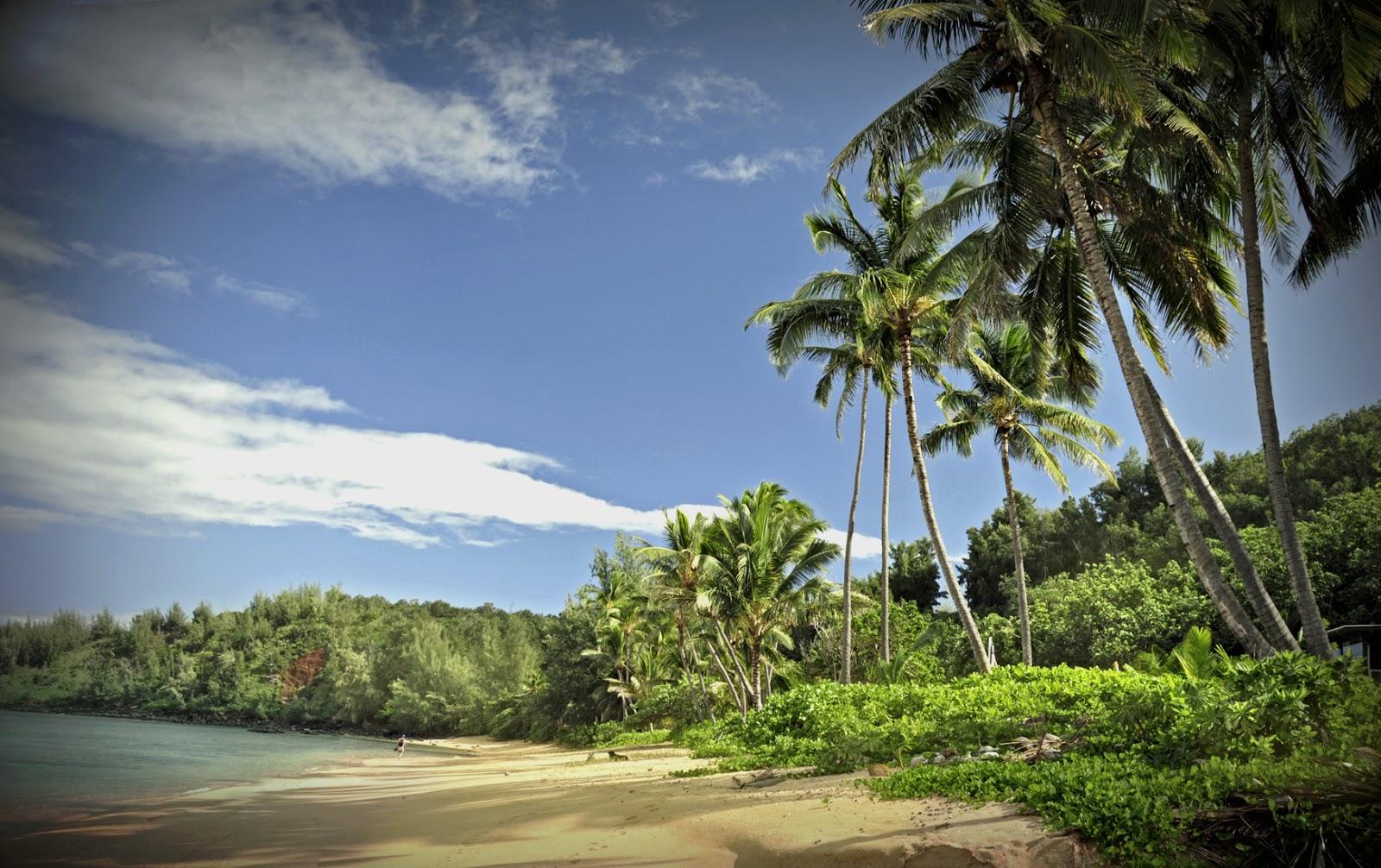 Aloha kauai foto 1 portraits 20