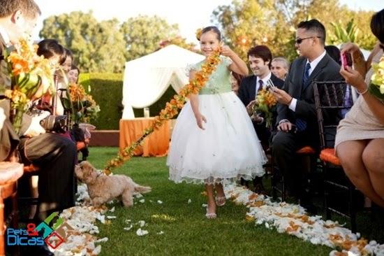 Casamento com cães