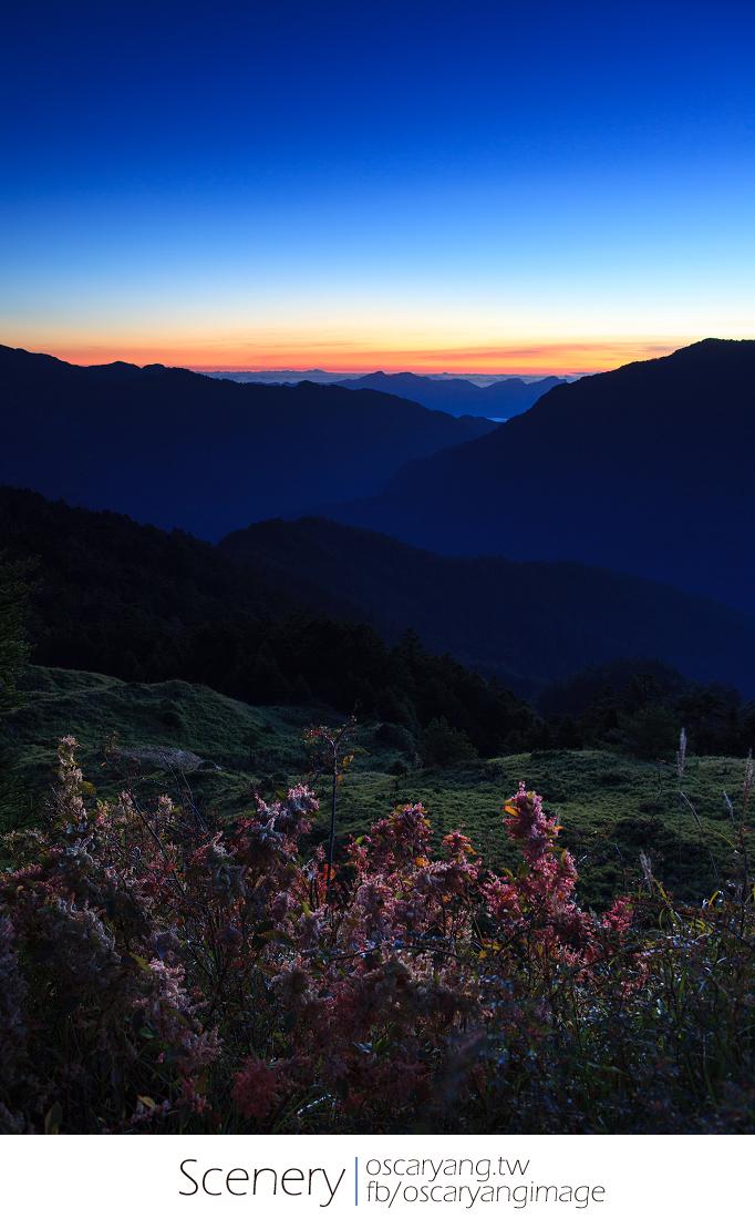 合歡山秋季風景24耐:星軌 夜景 日出 芒草 藍天白雲 夕陽 雲海,七個願望一次滿足,EYE Taiwan X Oscar Yang