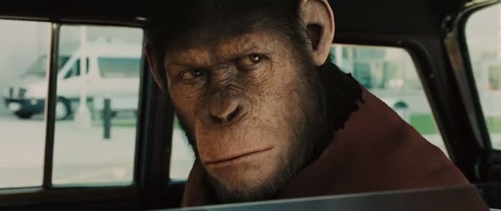 Free Download Rise of the Planet of the Apes Hollywood Movie 300MB Compressed For PC