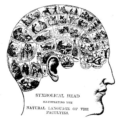 Mappa frenologica del XIX secolo. La frenologia fu definita una pseudoscienza nel 1843 e continua anche oggi ad essere considerata tale.