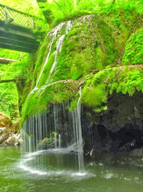 Cachoeira coberta por musgo na Romênia