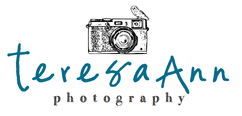 teresa ann photography {365}