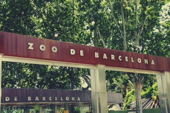 barcelona z dziećmi, co zobaczyć w barcelonie, co zwiedzić w barcelonie