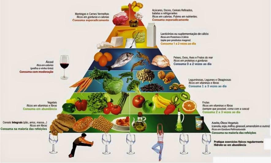 A energia (vida) dos alimentos - Pirâmide Alimentar