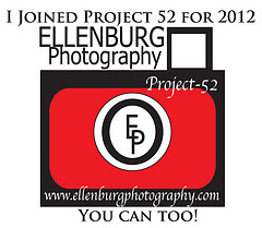 EP Project 52 ~ 2012