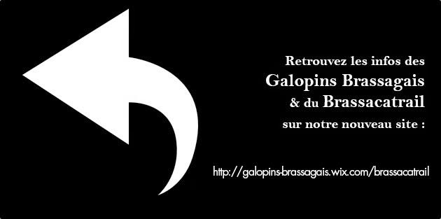 http://galopins-brassagais.wix.com/brassacatrail