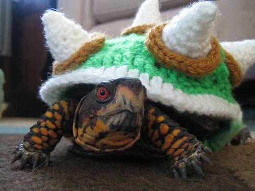 Cosplay tortuguil de Bowser