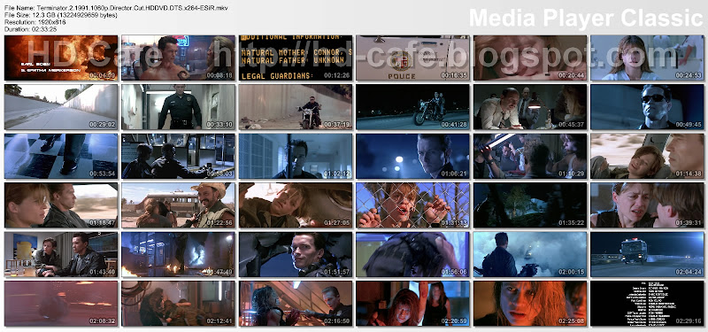 Terminator 2 - Judgment Day 1991 video thumbnails