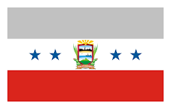 Bandera del Muicipio Carirubana