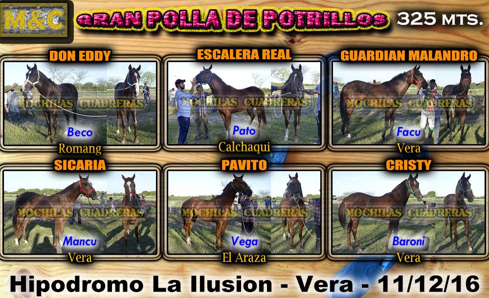 PP1 - VR