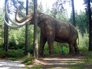 the woolly mammoth with inward curving tusks in the resurrection of an ice age giant Age of wisdom, it was the age of foolishnes, it was the epoch of.