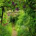 Enid Blyton's Old Thatch Gardens