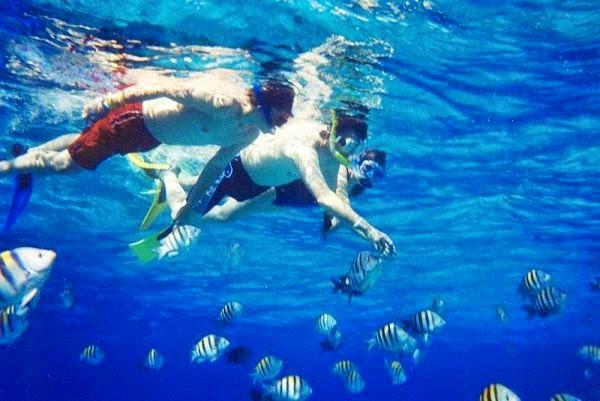 Du lịch đảo Phú Quốc - Kinh nghiệm du lịch và địa điểm ăn chơi ở Đảo Phú Quốc 1