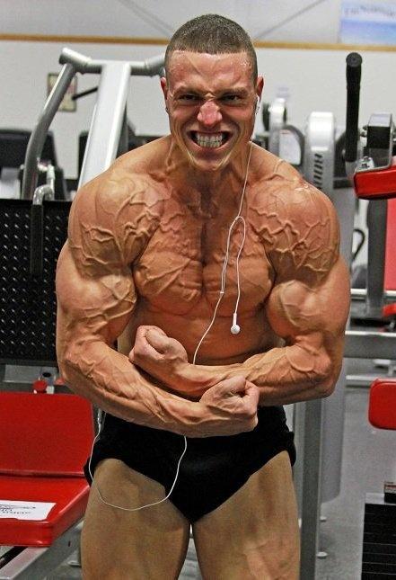 Vascular Bodybuilding ...
