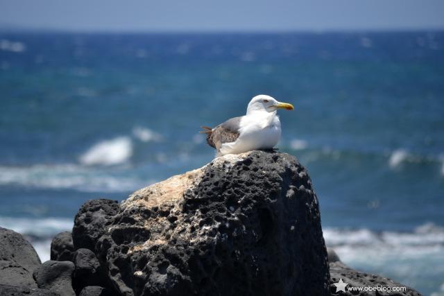 Lugares_con_encanto_en_Lanzarote_El_Golfo_06