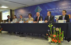 MÉXICO / Organizaciones sociales exigen más al G-20+Emergentes