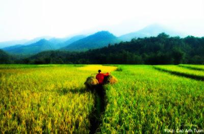 Arti Kata Agribisnis: Menjawab Kegelisahan