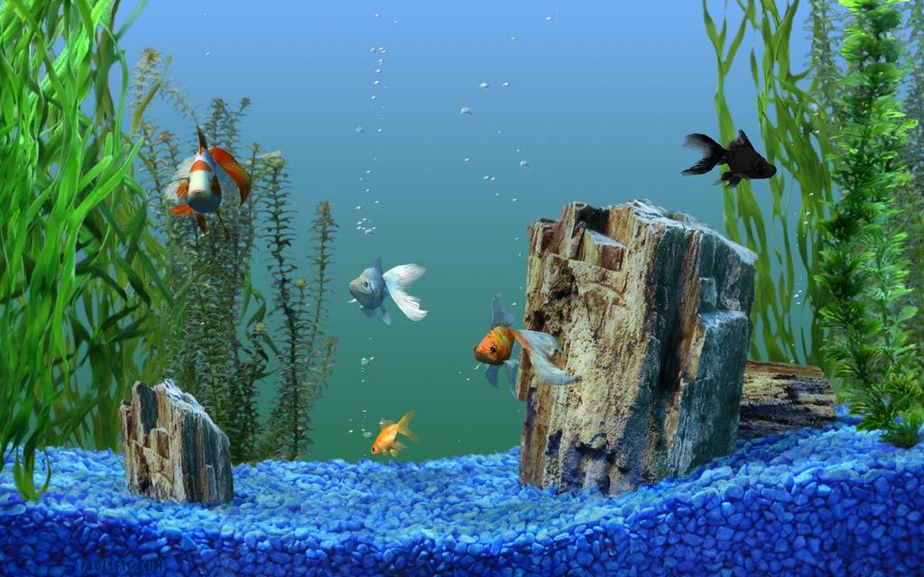 Декорация в аквариуме своими руками