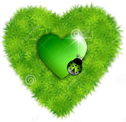 corazón de mariquita