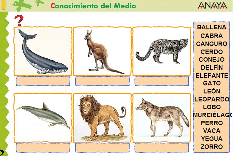JUEGO ANIMALES