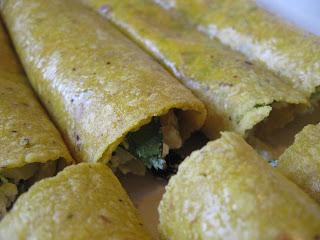 Mexico - Goat Cheese Enchiladas and Homemade Red Mole