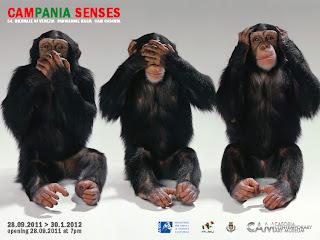 Campania-Senses