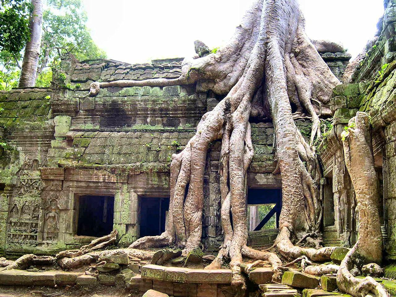 Angkor Wat: capital de um império entregue à mata sem explicacão.