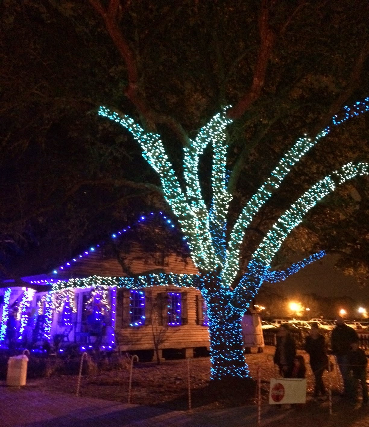 Acadian Village -- Lafayette, LA - Blogs - Donaldsonville Chief ...
