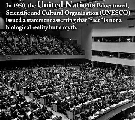 UN statement about race