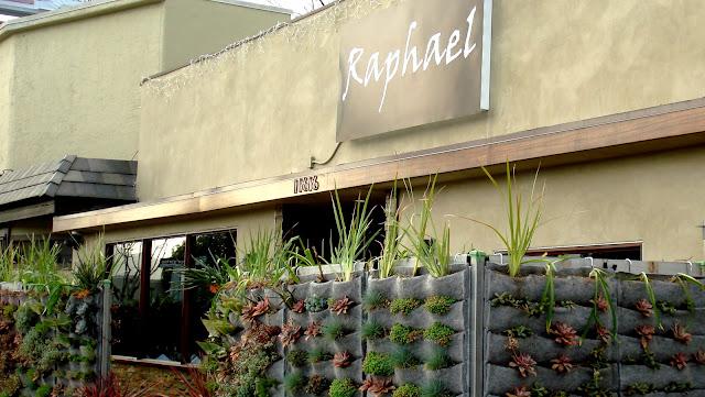 jardim vertical muro: muro foi coberto com um lindo jardim vertical com vários tipos de