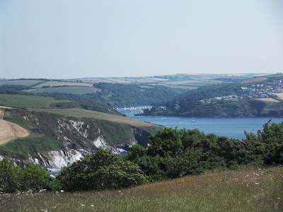 River Fowey seen from Gribbin Head