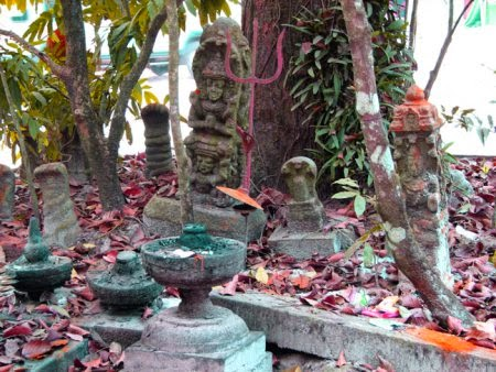 Snake Temple Mannarasala Kerala story in Hindi