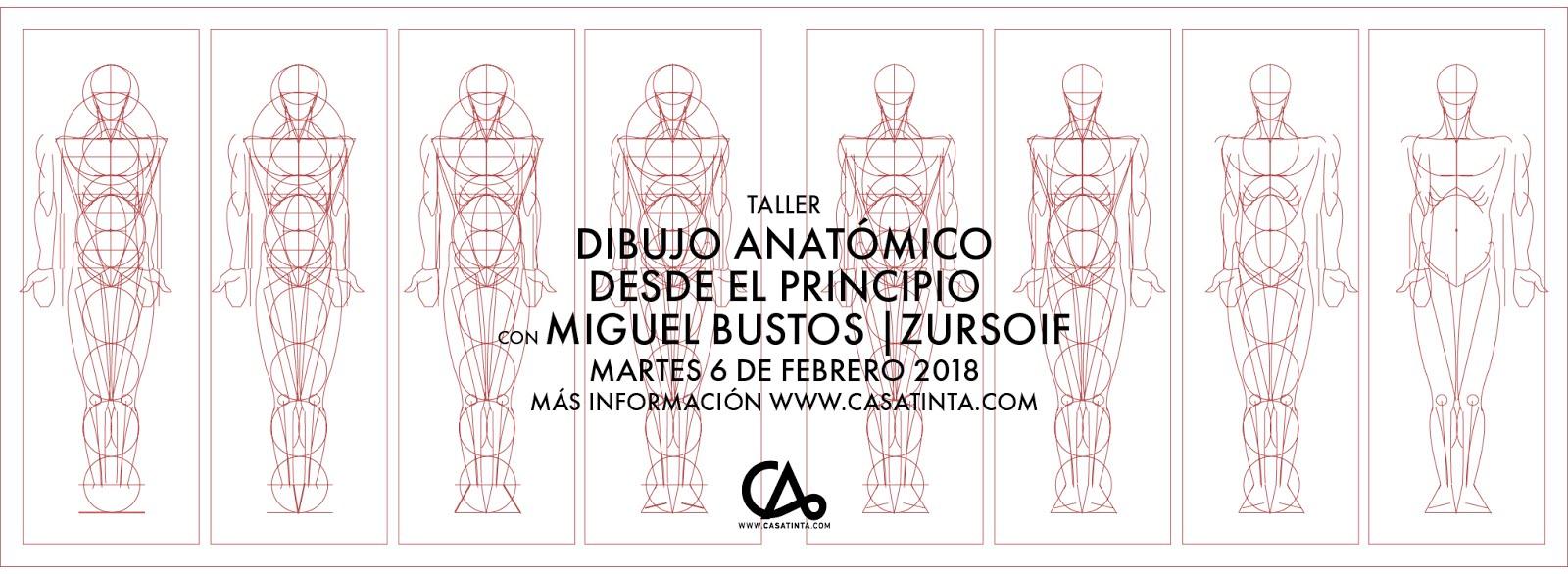 DIBUJO ANATÓMICO DESDE EL PRINCIPIO // 6 de feb