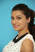 Hamsa Nandini Glamorous photos-thumbnail-13