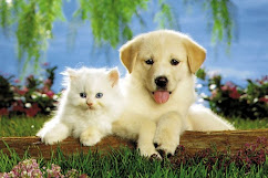 Las Mascotas *-*