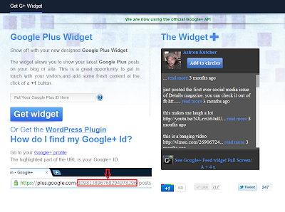 google plus feed widget