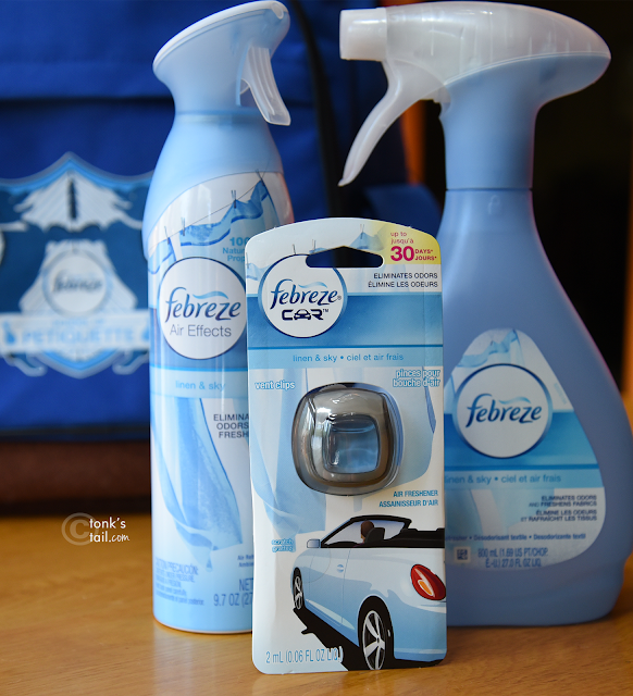 Febreze odor eliminator in 3 forms: car air freshener, aerosol and pump spray