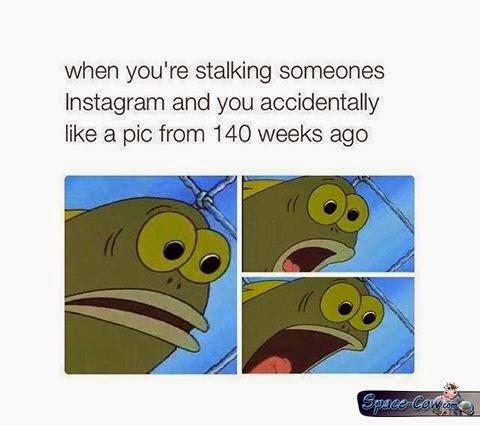 funny Instagran pics humor