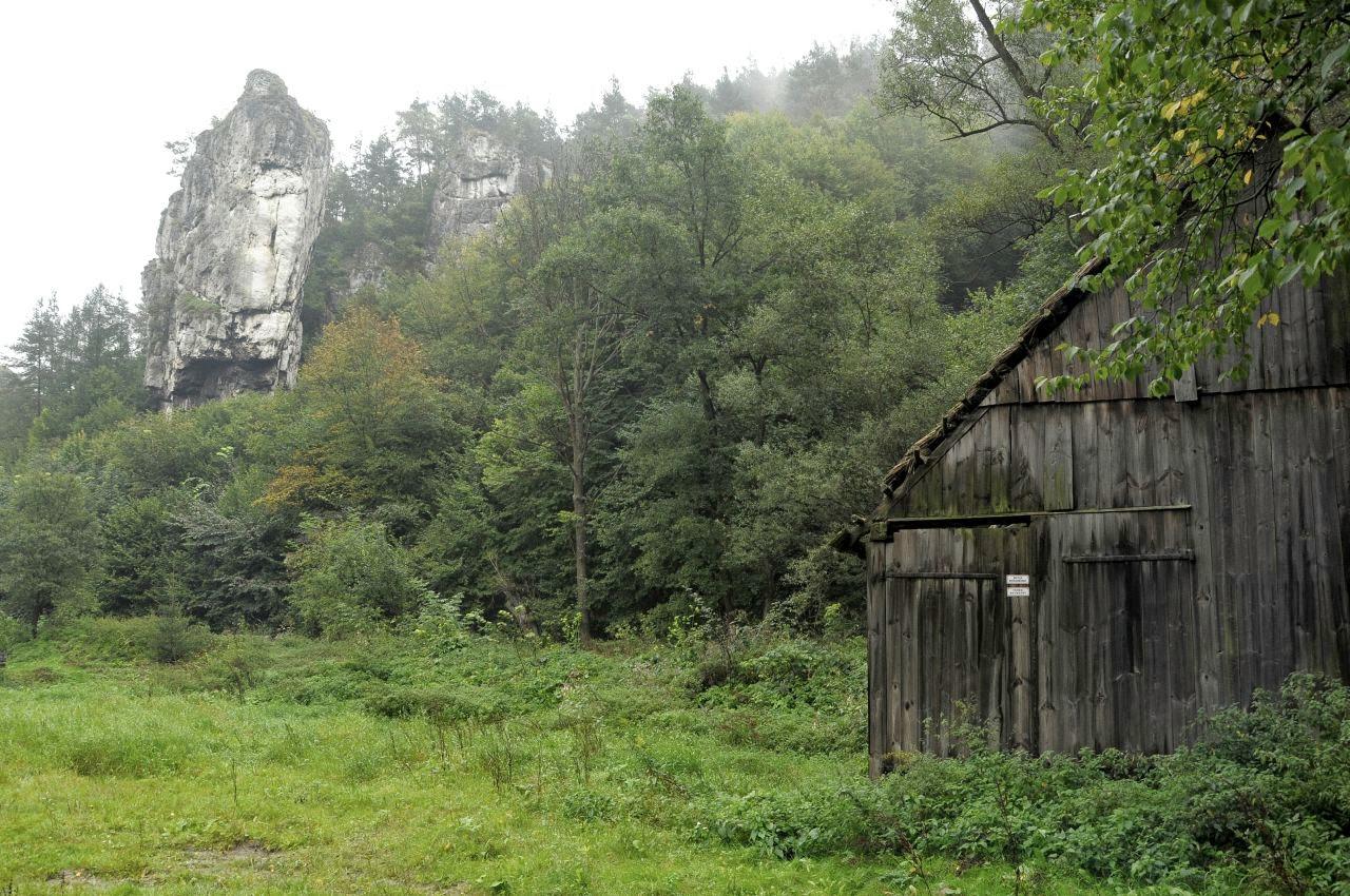 opuszczona stodoła na tle Pochylca
