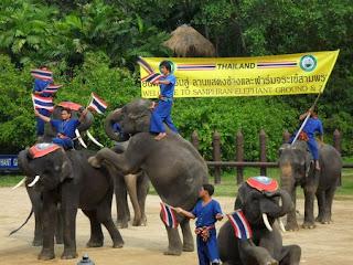 Samphran Elephant Ground - Paket Tour 3H2M Bangkok Floating Market