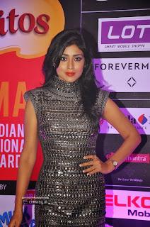 Sriya-Saran-at-SIIMA-Awards-2013