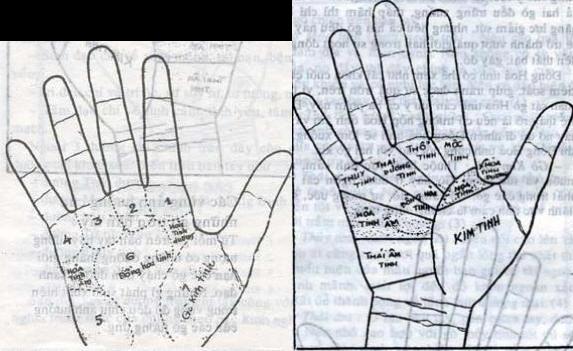 Bói Toán Cách xem bói chỉ tay đường tình duyên-hôn nhân-sự nghiệp trên bàn tay 2